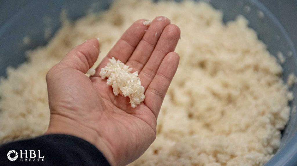 天然菌 発酵 生味噌