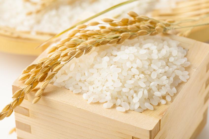 無農薬 米