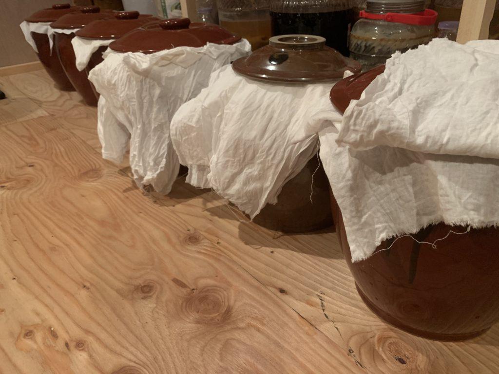 カメ 発酵 生味噌