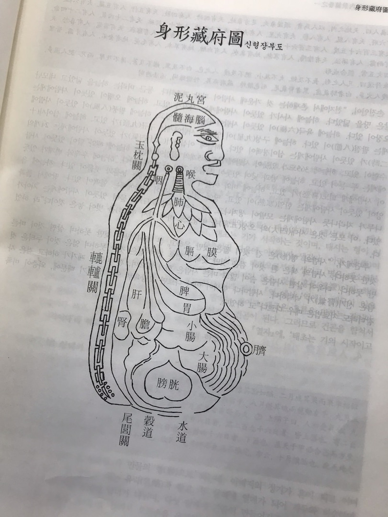 韓方 東医宝鑑